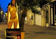 TEMPATION - PALM TREE